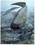 Dunkleosteus and Cladoselache
