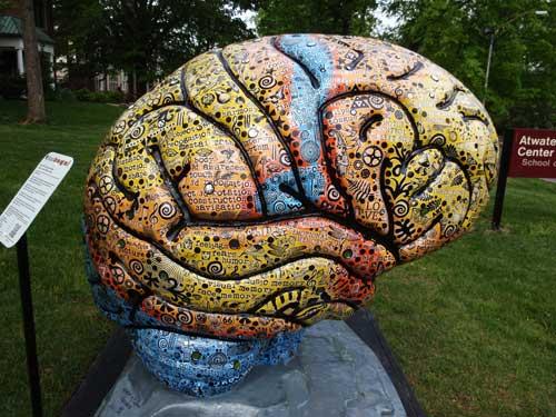 brain-exhibit