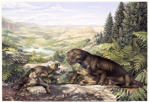 Thrinaxodon and pups