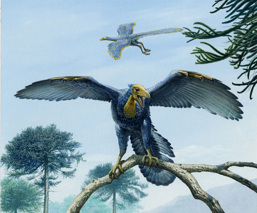 Perching Archaeopteryx