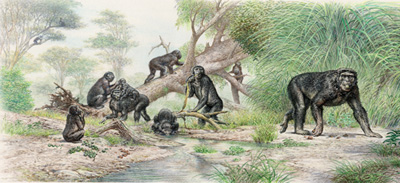Griphopithecus