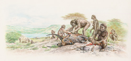 Homo habilis group at Olduvai