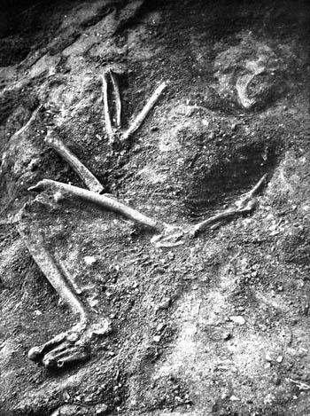Laferrasie burial