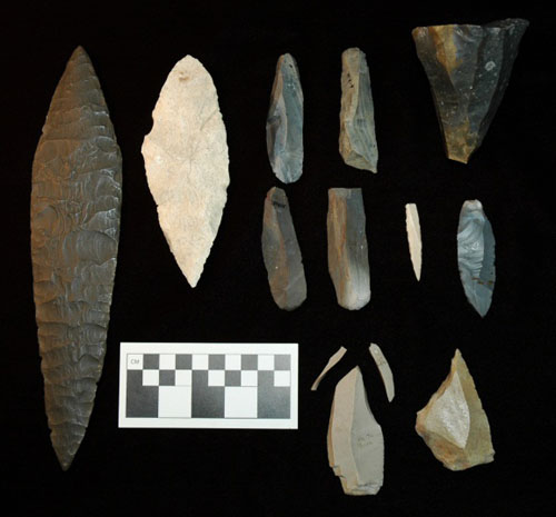 An assemblage of various blades