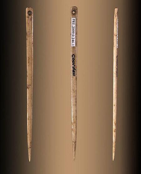 Bone needles